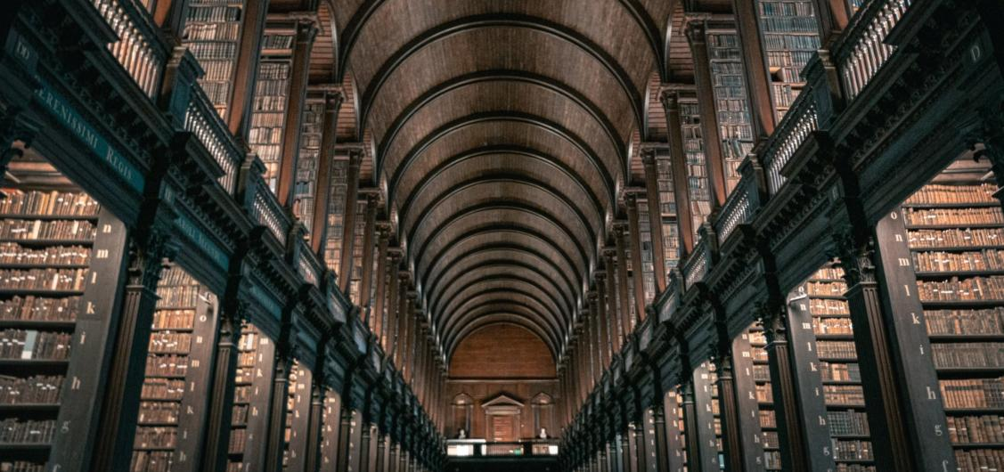 Walking Tour with Entrance to the Book of Kells